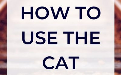 How to use the CAT in Vienna
