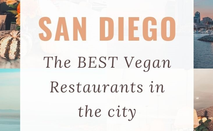 Top Vegan Restaurants in San Diego