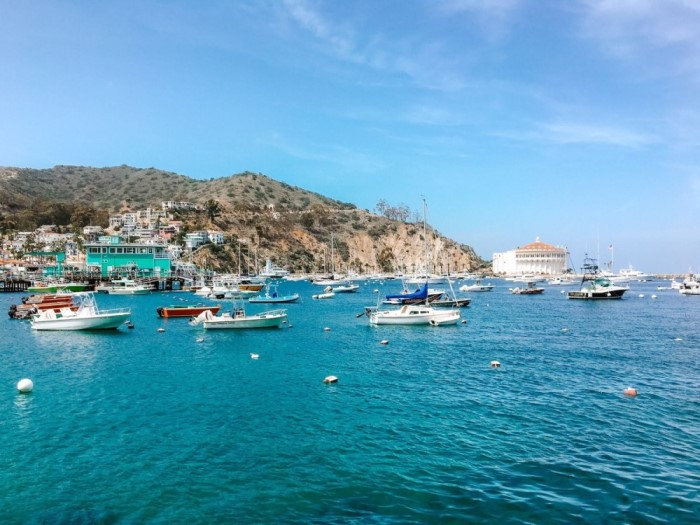 Catalina Island | Day Trips from San Diego