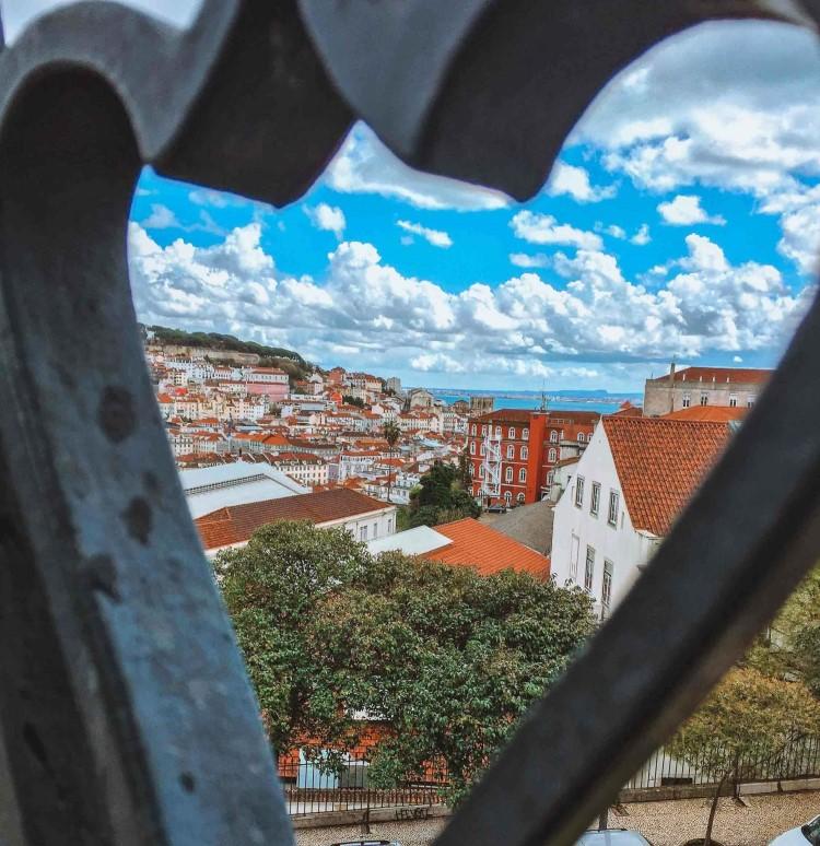 view from Miradouro de São Pedro de Alcântara in Lisbon (2)