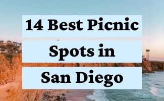 Top 14 Picnic Spots in San Diego, California