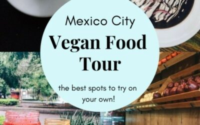 Vegan Food in Mexico City